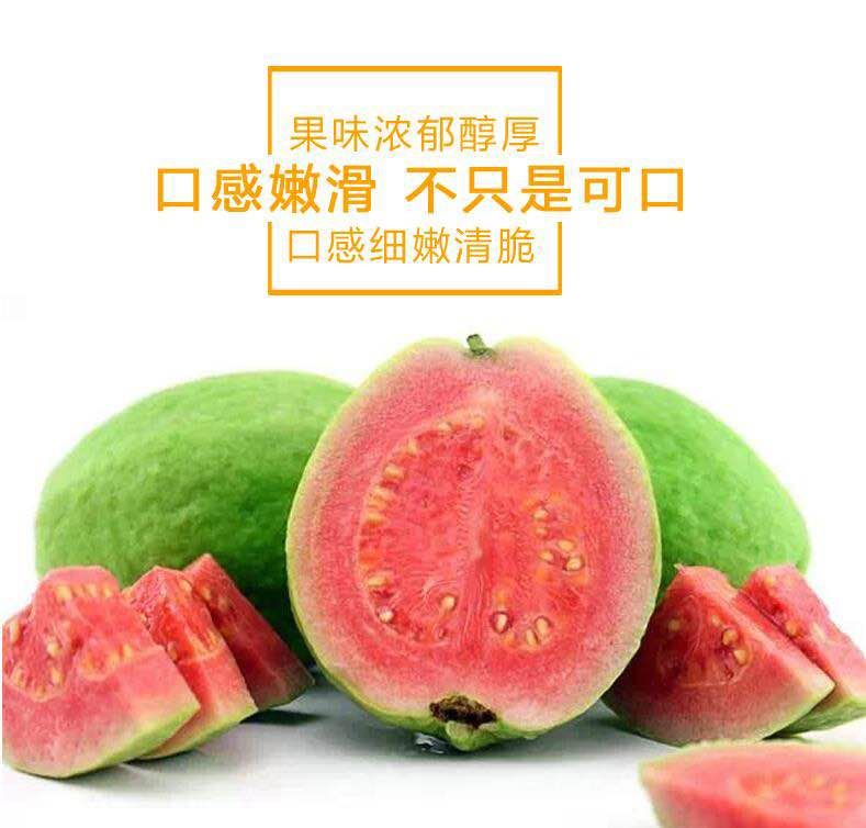 台湾芭乐43.jpg