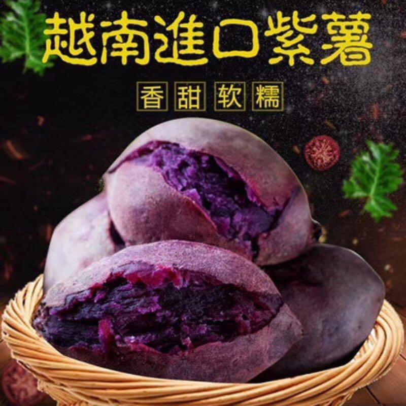 越南紫薯41.jpg