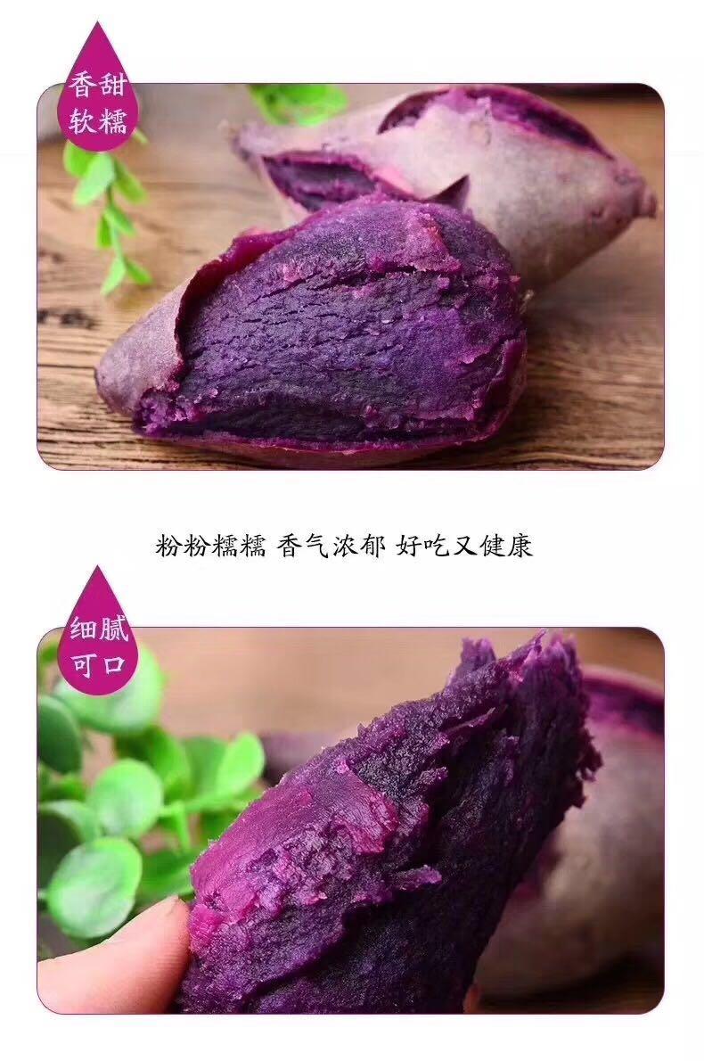 越南紫薯47.jpg