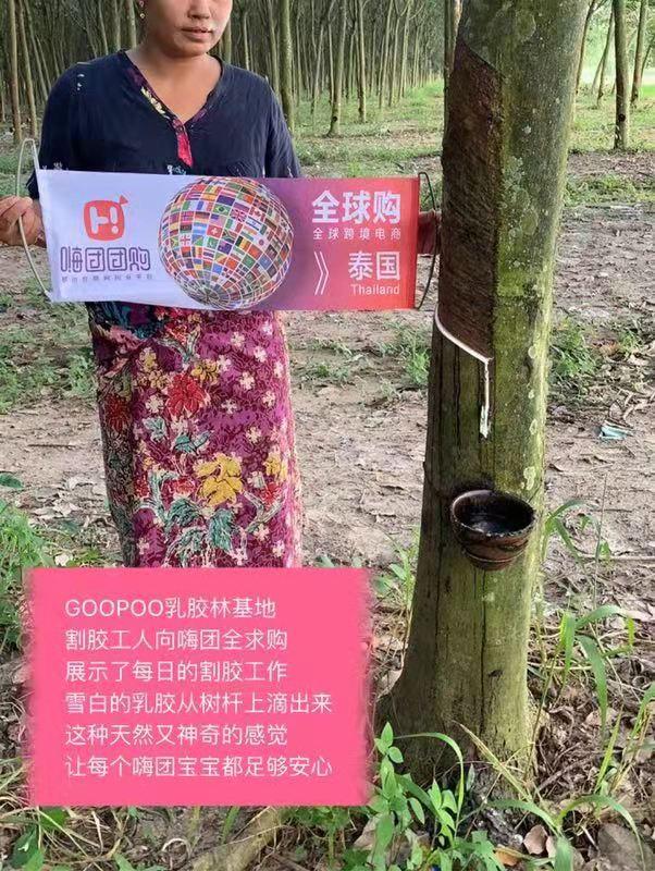 嗨团GOOPOO泰国天然乳胶枕21.jpg