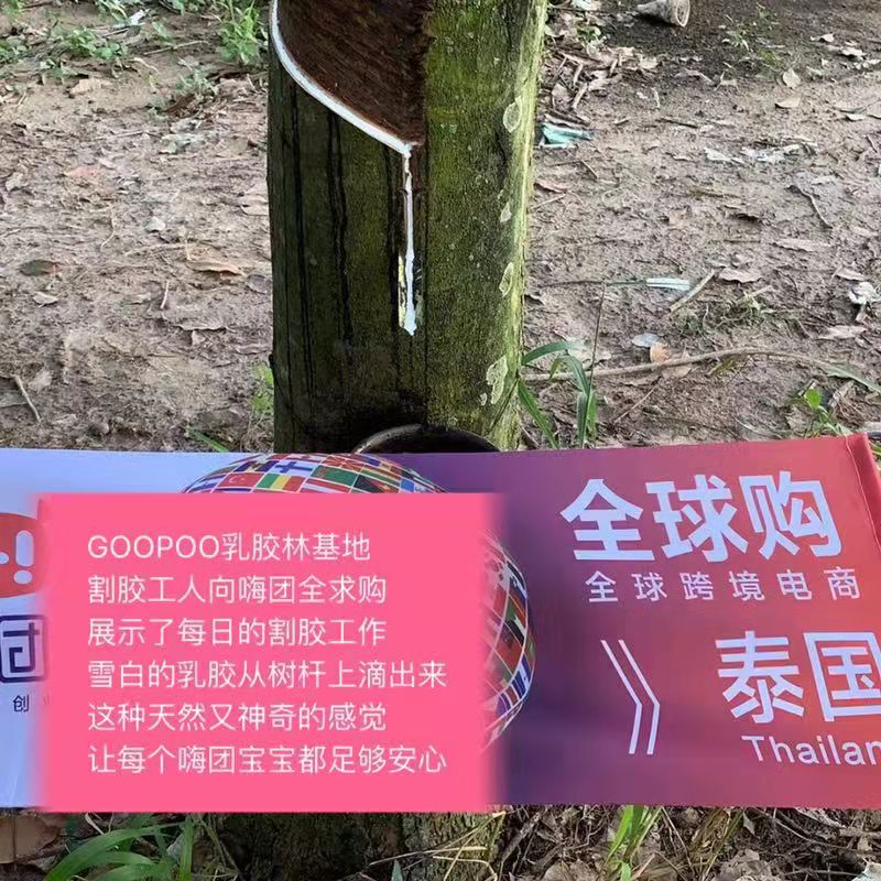 嗨团GOOPOO泰国天然乳胶枕24.jpg