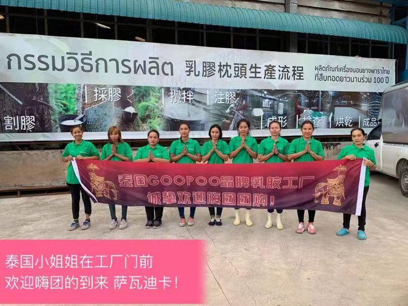 嗨团GOOPOO泰国天然乳胶枕29.jpg