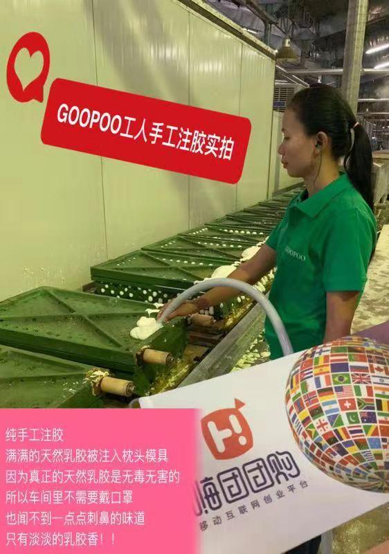 嗨团GOOPOO泰国天然乳胶枕22.jpg