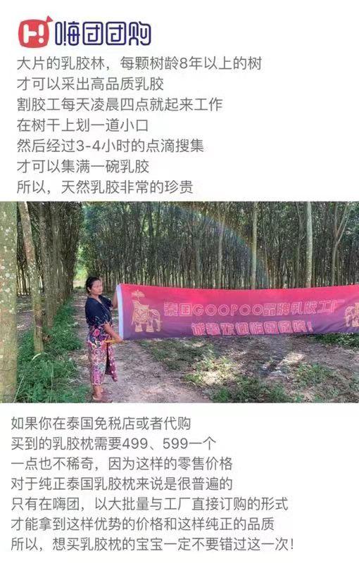 嗨团GOOPOO泰国天然乳胶枕27.jpg