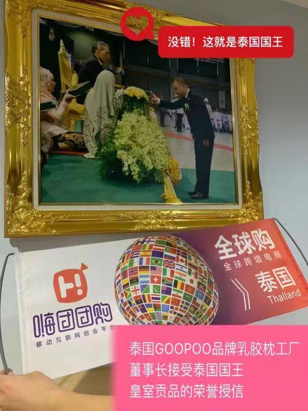 嗨团GOOPOO泰国天然乳胶枕28.jpg