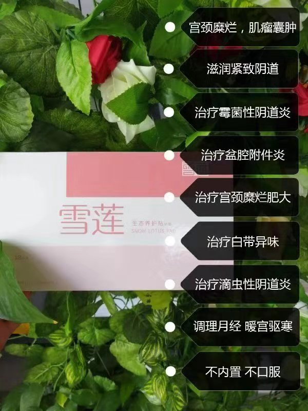 嗨团定制雪莲贴50.jpg