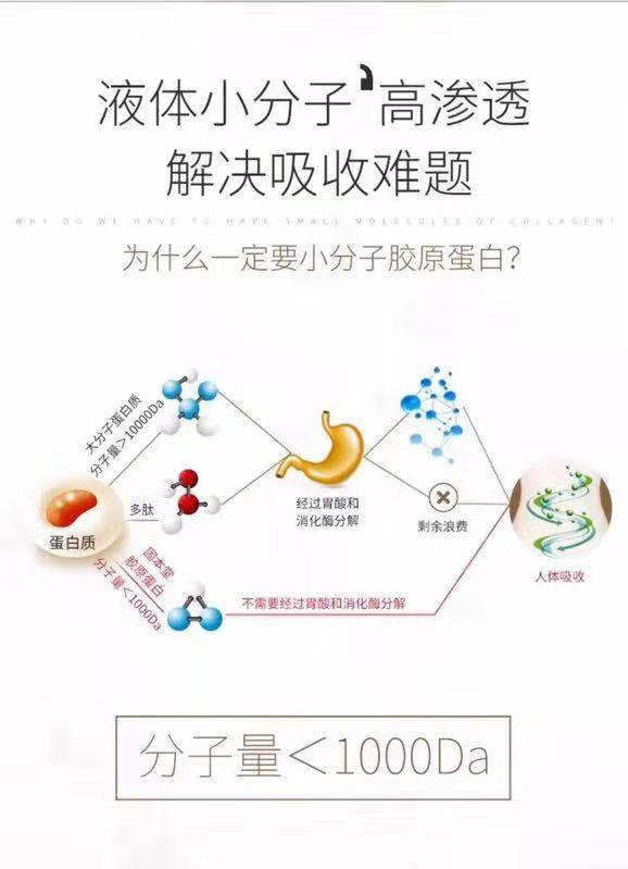 嗨团固本堂胶原蛋白2盒43.jpg