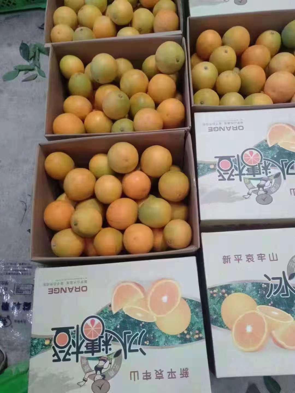 嗨团新平哀牢山冰糖橙8斤57.jpg