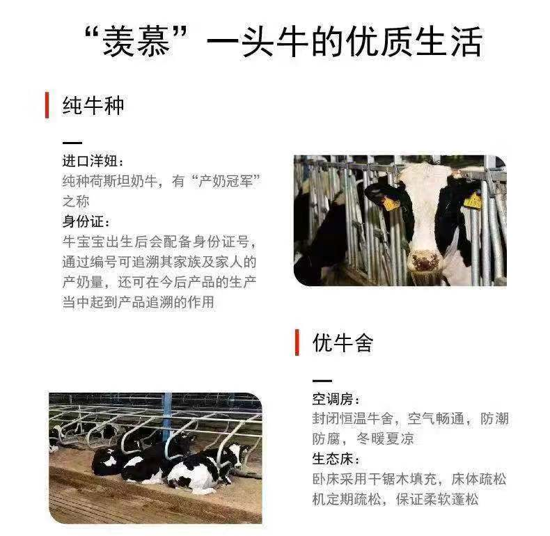 嗨团君乐宝纯小白纯牛奶8.jpg