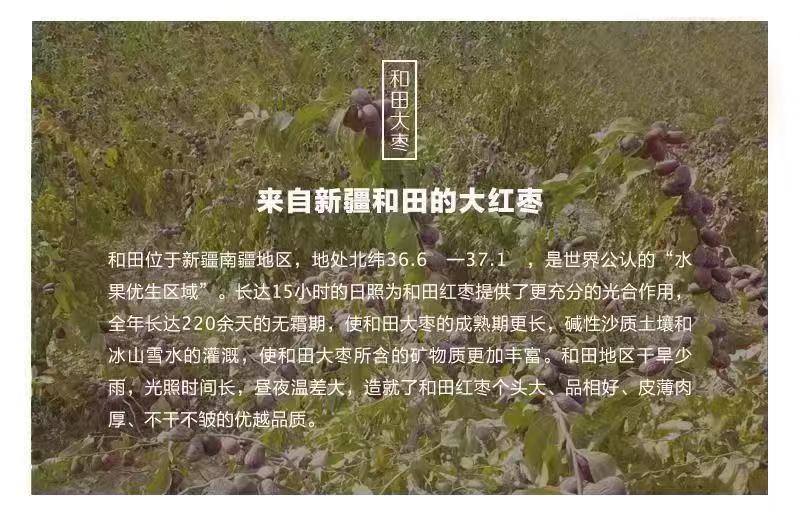 嗨团新疆和田红枣10.jpg